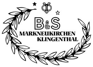 B&S company logo