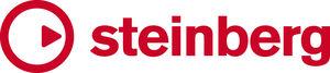 Steinberg bedrijfs logo